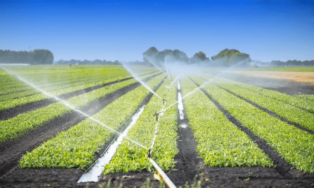 Irrigation Systems Blockbustersblockbusters